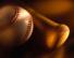 Mansfield Youth Baseball Association