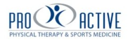 www.getproactivephysicaltherapy.com